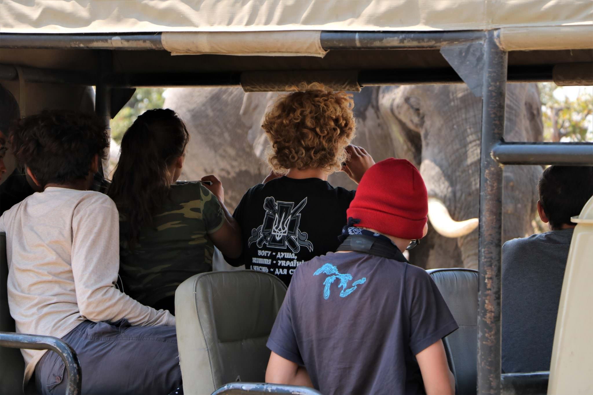 A group of ACE volunteers observing an elephant from a jeep