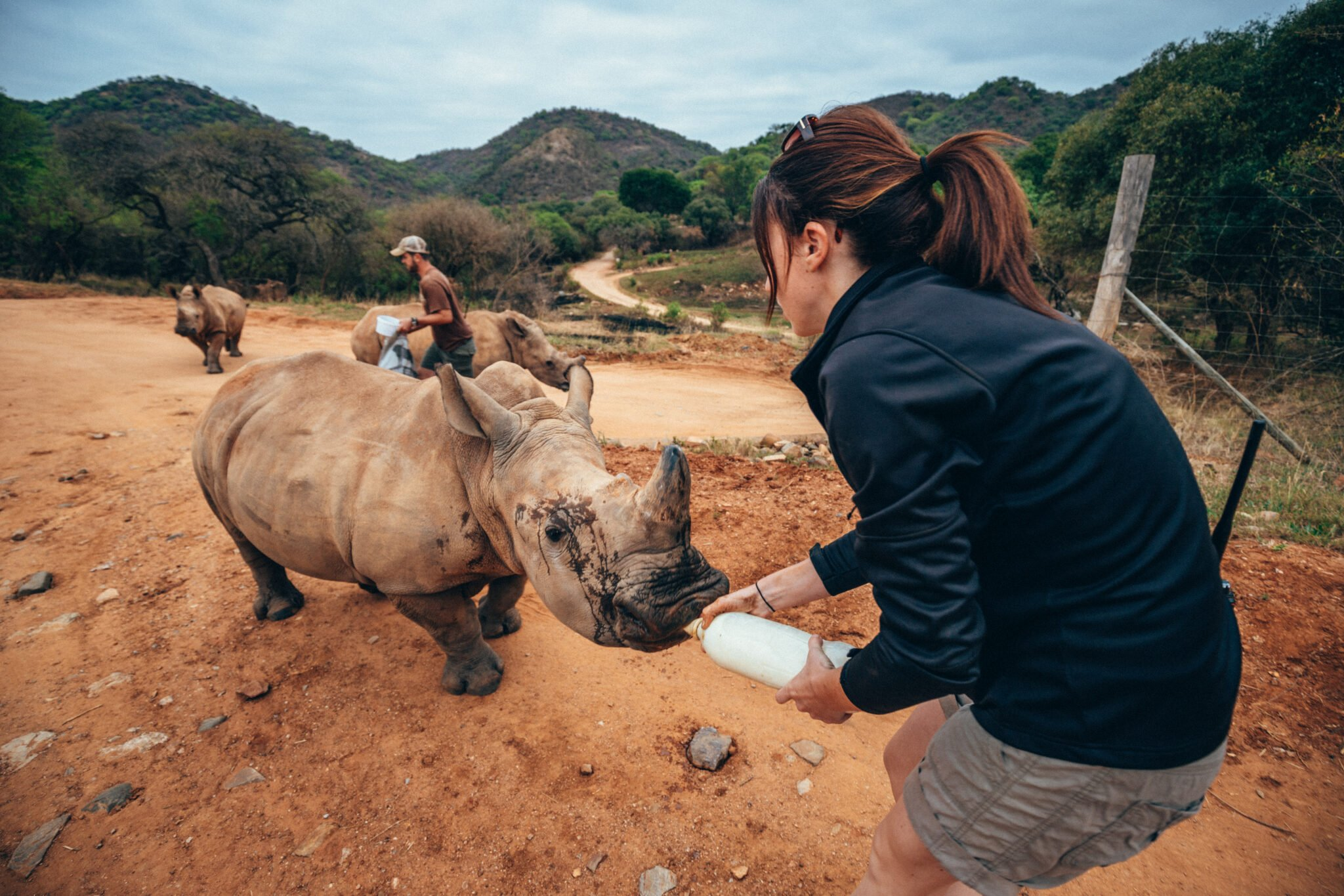Rachael Pfeiffer and Will Shortridge feeding Rhinos at Care for Wild | Work on the Wild Side'